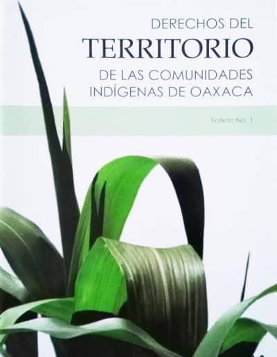 derechos del territorio de las comunidades de oaxaca
